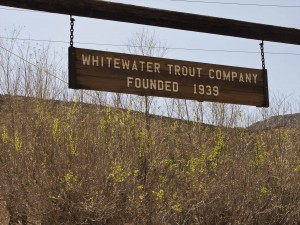 Whitewater Trout Co.